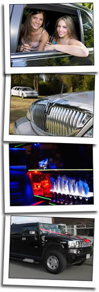Limousines and chauffeur cars graphic